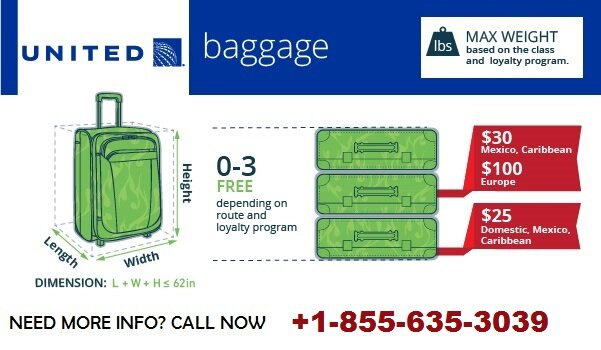 United Airlines Baggage Fees Policy International Weight