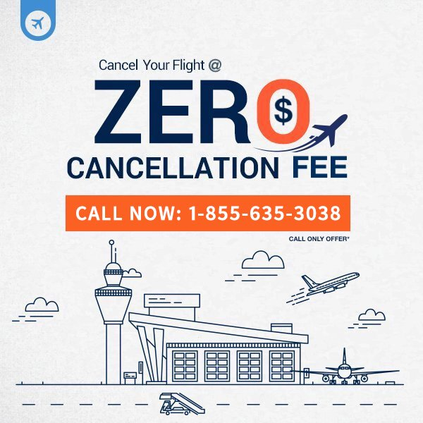 Flight Cancellation Offer