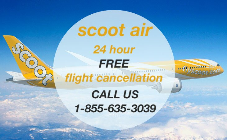 Scoot Air 24 Hour Cancellation Policy